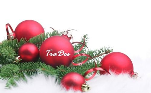 С Новым 2014 Годом! Бюро переводов Традос!